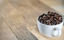 Morning coffee bean in coffee cup Royalty Free Stock Photos