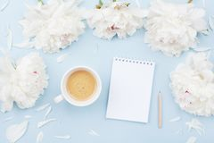 Morning coffee cup for breakfast, empty notebook and white peony flowers on pastel table top view. Woman working desk. Flat lay. Stock Image