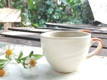 Morning coffee cup concept. flower on vintage background stock images