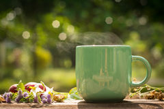 Morning coffee cup. With nature background Royalty Free Stock Images