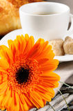Morning coffee and freshly cut flower Royalty Free Stock Photography