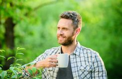 Morning coffee. healthy lifestyle. nature and health. drink tea outdoor. ecological life for man. man in green forest. Breakfast refreshment time. happy man stock image