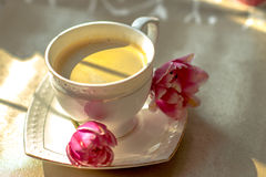 Morning coffee. Sunny morning in the kitchenn Stock Photography