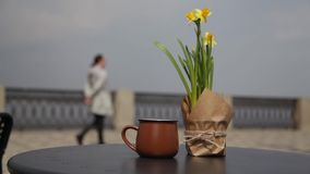 Morning coffee on the table with a bouquet of daffodils in an open cafe. People pass on a blurred background. Morning coffee on the table with a bouquet of stock video footage