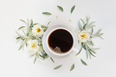 Morning coffee and white wild roses Royalty Free Stock Images
