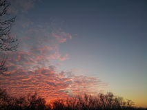 red sky in cold morning of february Stock Images