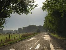 Morning country road. Sunrise on rural country road Stock Images