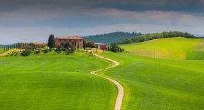 Morning on countryside in Tuscany Royalty Free Stock Photos