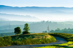 Morning in the countrysides royalty free stock image