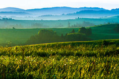 Morning in the countrysides royalty free stock photo