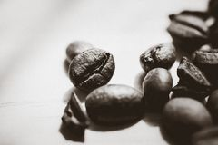 Coffee beans. Morning cup of coffee,coffee beans Stock Photos