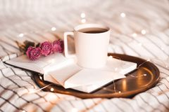 Morning cup of tea with book. Cup of tea on open book with flowers over lights at background. Valentines day. Good morning royalty free stock images