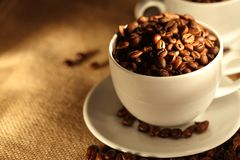 Morning cups of coffee, full of beans. Royalty Free Stock Photos