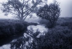Morning. dawn near a picturesque river Royalty Free Stock Photos