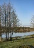 Morning dawn, spring flowering, landscape. stock photo