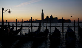 Morning dawn in Venice Stock Images