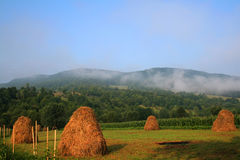 Morning day at the country side. With hayracks royalty free stock photo