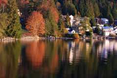 Morning at deep cove Stock Photography