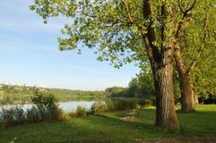Morning at deer lake park Royalty Free Stock Photo