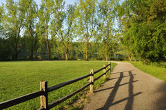 Morning at deer lake park, burnaby Royalty Free Stock Photography