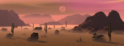 Morning in the desert Stock Photo