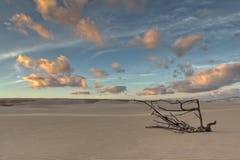 Morning Desert. Early Morning in Desert of Boa Vista, Cape Verde Stock Photography
