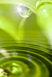 Morning dew. Green sunny morning dew background Stock Image