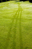 Morning dew on golf grass Royalty Free Stock Photography