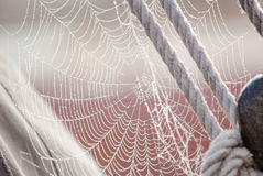 Morning dew on Spiderweb sailboat detail Royalty Free Stock Images