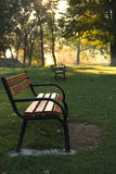Morning dew on a sunny autumn morning. Morning shadows over green grass in a park with dewy benches Royalty Free Stock Images