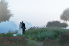 Morning Dreams. Bridal couple in the early morning mist looking out over the landscape. Couple is in sharp focus but entire scene is misty/foggy. THey are Stock Images