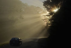 Morning drive in Osa. On a beautiful morning a car penetrates through a sun shower in a lonely street of the wild Osa Península in Costa Rica Royalty Free Stock Images