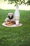 Morning eco food. Milk with jam and croissants Stock Photos