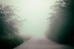 Mystical fog on a country road. Morning or evening Mystical fog on a country road royalty free stock image
