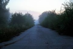 Mystical fog on a country road. Morning or evening Mystical fog on a country road stock image