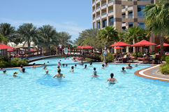 Morning exercise in the pool. Abu Dhabi. The United Arab Emirate Royalty Free Stock Image