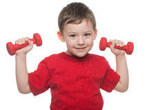 Morning exercises with dumbbells Royalty Free Stock Photography