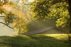 Morning on the farm royalty free stock photos