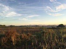 Morning at farmland Royalty Free Stock Images
