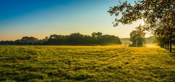 The morning field. Royalty Free Stock Images