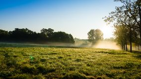The morning field. Royalty Free Stock Photography