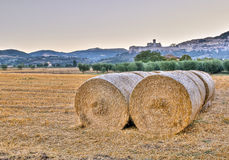 Morning fields and Basilica of St. Francis Royalty Free Stock Photos