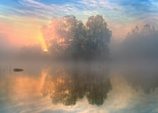Morning. Fine calm morning at the lake Royalty Free Stock Images