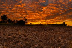 Morning fire sky and scattered clouds with trees and agricultural field as silhouette foreground. Thailand stock photos