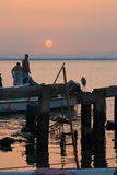 Morning of fishermen Royalty Free Stock Image