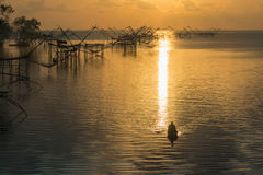 Morning fishery. Commercial fishery use big fishnet in lake Stock Photography