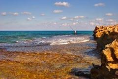 Morning fishing. Lonely fisherman on a sunny sea shore Stock Photos