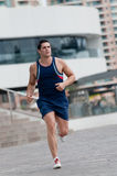 Morning Fitness Royalty Free Stock Photography