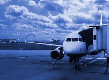 Morning flight Stock Images