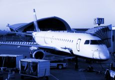 Morning flight royalty free stock photo
